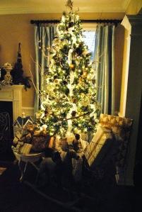 Christmas Tree in dark